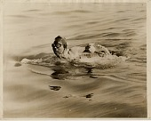 view Mille Gade Corson Photographs (swimming related) digital asset: Mille Gade Corson Photographs (swimming related)