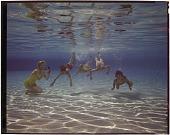 view Kids swimming underwater / Cyprus Gardens Fla [sic] [chromogenic color transparency] digital asset: Kids Swimming Underwater, FL. [286D]