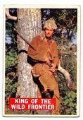 view Merrie Spaeth Collection of Davy Crockett Trading Cards digital asset: Card numbers 1 - 80
