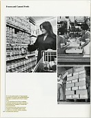 view El Chico Restaurants Collection digital asset: El Chico annual reports