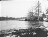 view View of the Chickahominy River digital asset: View of the Chickahominy River