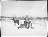 view Innu [Mashteuiatsh (Pointe-Bleue, Quebec)] Boys on a Sled digital asset: Innu [Mashteuiatsh (Pointe-Bleue, Quebec)] Boys on a Sled