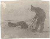 view Seal hunt near Cape Searle, Baffin Island digital asset: P32297