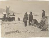 view Seal hunt near Cape Searle, Baffin Island digital asset: P32302