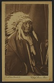 view Chief Brave Bear digital asset: Chief Brave Bear