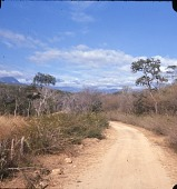 view Dirt road leading toward mountains digital asset: Dirt road leading toward mountains