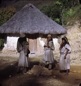 view Ika (Ica/Arhuaco) traders digital asset: Ika (Ica/Arhuaco) traders