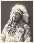 view Chief American Horse, Sioux, No. 1003 digital asset: Chief American Horse, Sioux, No. 1003