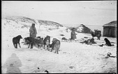 view Yuit (Siberian Yup'ik) Dogs and Houses digital asset: Yuit (Siberian Yup'ik) Dogs and Houses