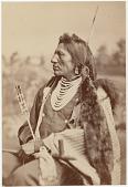 view Goose (Goos) [Yanktonnai Nakota (Yankton Sioux)] digital asset: Goose (Goos) [Yanktonnai Nakota (Yankton Sioux)]