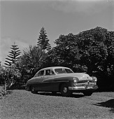 view Automobile, Natal, South Africa digital asset: Automobile, Natal, South Africa
