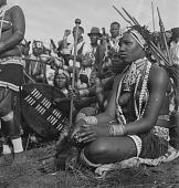 view Zulu People digital asset: Zulu People