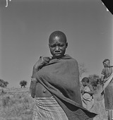 view Young Lovedu woman with cloth wrap, Northern Transvaal (South Africa) digital asset: Young Lovedu woman with cloth wrap, Northern Transvaal (South Africa)