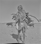 view San woman carrying wood, Kalahari Desert, Botswana digital asset: San woman carrying wood, Kalahari Desert, Botswana