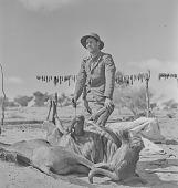 view Man with slain cattle, Kalahari Desert, Botswana digital asset: Man with slain cattle, Kalahari Desert, Botswana