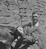 view W.L.J. Van Rensburg with cow, Transkei (South Africa) digital asset: W.L.J. Van Rensburg with cow, Transkei (South Africa)