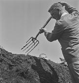 view W.L.J. Rensburg studying soil erosion, Transkei (South Africa) digital asset: W.L.J. Rensburg studying soil erosion, Transkei (South Africa)