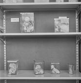 view Scientific specimens (fetuses) at the Onderstepoort Veterinary Research Institute, Pretoria (South Africa) digital asset: Scientific specimens (fetuses) at the Onderstepoort Veterinary Research Institute, Pretoria (South Africa)