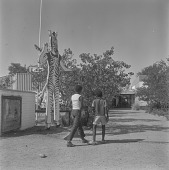 view Children walking past the welcome sign at the National Museum and Art Gallery, Gaborone (Botswana) digital asset: Children walking past the welcome sign at the National Museum and Art Gallery, Gaborone (Botswana)