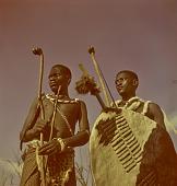 view Swazi warriors with shield and weapons, Nhlangano (Swaziland) digital asset: Swazi warriors with shield and weapons, Nhlangano (Swaziland)