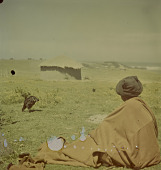 view Xhosa woman sitting, Transkei (South Africa) digital asset: Xhosa woman sitting, Transkei (South Africa)