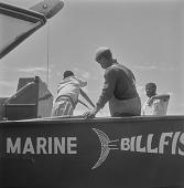 view Marine Billfish fishing boat, Cape Town (South Africa) digital asset: Marine Billfish fishing boat, Cape Town (South Africa)