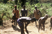 view Musicians attending young adult males threshing rice, Siemamaya Village, Sierra Leone digital asset: Musicians attending young adult males threshing rice, Siemamaya Village, Sierra Leone