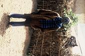view Pa Sorie Mansaray wearing hu ronko shirt as well as scarf made of European cloth, Bafodea Town, Sierra Leone digital asset: Pa Sorie Mansaray wearing hu ronko shirt as well as scarf made of European cloth, Bafodea Town, Sierra Leone