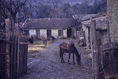view Farmyard, near Atlas Mountain Range, Algeria digital asset: Farmyard, near Atlas Mountain Range, Algeria