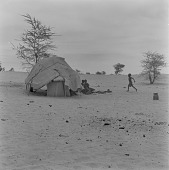 view Maure children outside of a tent, north of Tombouctou, Mali digital asset: Maure children outside of a tent, north of Tombouctou, Mali