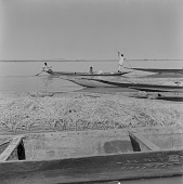 view Men rowing canoes outside of Gao, Mali digital asset: Men rowing canoes outside of Gao, Mali