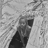 view Peul (Fula) woman looking out of her tent in an encampment near Mopti, Mali digital asset: Peul (Fula) woman looking out of her tent in an encampment near Mopti, Mali