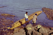 view Young men standing near a papyrus boat (tankwa) at Lake Tana, Ethiopia digital asset: Young men standing near a papyrus boat (tankwa) at Lake Tana, Ethiopia