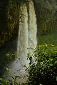 view Marilyn Heldman photographs digital asset: The waterfall of Mouenkeu, Bafang, Cameroon