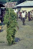view Urhobo Leaf Masquerade performer dancing, Ohoro Town, Nigeria digital asset: Urhobo Masquerader, Ekpe, Leaf Masquerade, Ohoro Town, Nigeria