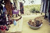 view Palm kernels at a market in Ughelli, Ughelli, Delta State, Nigeria digital asset: Palm Kernals, Ughelli Market Day, Ughelli, Delta State, Nigeria