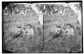 view Lieutenant Commander George Armstrong Custer sitting next to freshly-killed elk digital asset: Lieutenant Commander George Armstrong Custer sitting next to freshly-killed elk