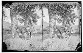 view Bloody Knife, Hunkpapa and Arikara scout, with horse digital asset: Bloody Knife, Hunkpapa and Arikara scout, with horse