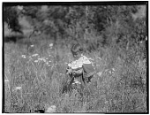 view Cheyenne girl (possibly Marie Bear Black) in field of grasses and wildflowers. In same sequence as 1398. Logbook title Nature's Blossoms digital asset: Cheyenne girl (possibly Marie Bear Black) in field of grasses and wildflowers. In same sequence as 1398. Logbook title Nature's Blossoms