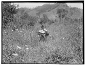 view Cheyenne girl (possibly Marie Bear Black) in field of grasses and wildflowers, 1905. In same sequence as 1393. Logbook title Cheyenne Baby digital asset: Cheyenne girl (possibly Marie Bear Black) in field of grasses and wildflowers, 1905. In same sequence as 1393. Logbook title Cheyenne Baby