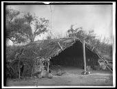 view Chemehuevi summer shelter. Logbook title Primitive Summer Home digital asset: Chemehuevi summer shelter. Logbook title Primitive Summer Home