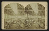 view Horti. Hall From W. Gallery digital asset: Horti. Hall From W. Gallery