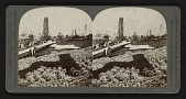 view Floral clock and the Ferris Wheel, Louisiana Purchase Exposition, St. Louis, Mo., U.S.A. digital asset: Floral clock and the Ferris Wheel, Louisiana Purchase Exposition, St. Louis, Mo., U.S.A.
