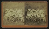 "view [Funerary floral arrangement]: floral pillow, ""From Friends."" digital asset: [Funerary floral arrangement]: floral pillow, ""From Friends."""