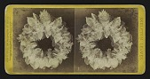 "view [Funerary floral arrangement]: ""Skeleton Leaves."" digital asset: [Funerary floral arrangement]: ""Skeleton Leaves."""