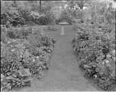 view Connally Garden digital asset: Connally Garden
