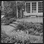 view Whipple Garden digital asset: Whipple Garden