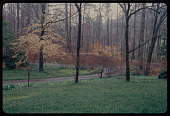 view Ken Druse garden photography collection digital asset: Birmingham -- Agee-Wrinkle Garden