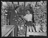 view David Burpee and Unidentified Woman in Greenhouse digital asset: David Burpee and Unidentified Woman in Greenhouse