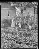 view Unidentified Vegetable Garden with Woman and Children (possibly Fordhook Farms?) digital asset: Unidentified Vegetable Garden with Woman and Children (possibly Fordhook Farms?)